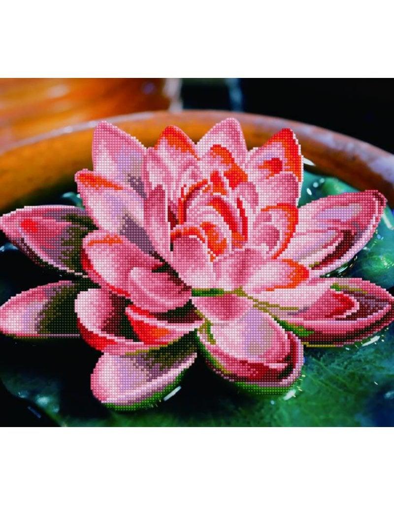Diamond Dotz Diamond Painting pakket Lotus