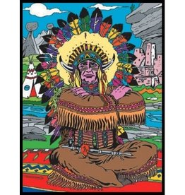 Painting Velvet Colorvelvet kleurplaat  Indiaan
