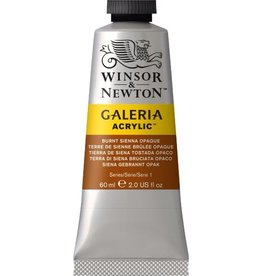 Winsor en Newton Galeria acrylverf Burnt Sienna Opaque