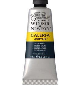 Winsor en Newton Galeria acrylverf Paynes Grey