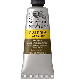 Winsor en Newton Galeria acrylverf Raw Umber