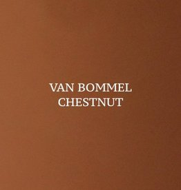 Chestnut Van Bommel Schoensmeer