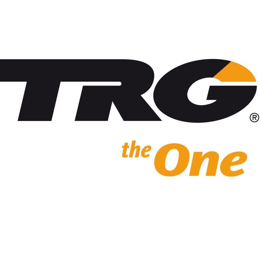 TRG TRG cleaning Block - gum suède nubuck