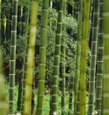 BORU Boru Bamboe sokken - ruit - zwart