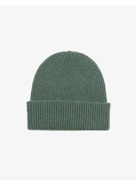 Colorful Standard Merino Wool Beanie - Emerald Green