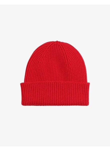 Colorful Standard Merino Wool Beanie - Scarlet Red