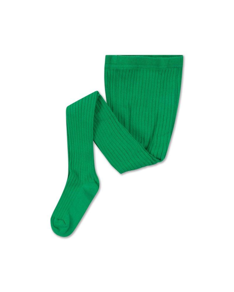 Repose AMS TIGHTS - magic green