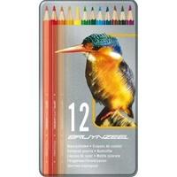 Kleurpotloden Bruynzeel vogel: 12 stuks