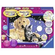 Hond en kat Schilderen op nummer