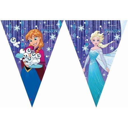 Frozen Vlaggenlijn Frozen snowflake: 2 meter