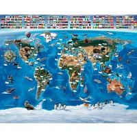 Behang wereldkaart Walltastic 245x305 cm