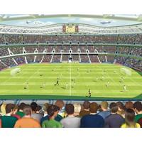 Behang voetbal stadion Walltastic 245x305 cm