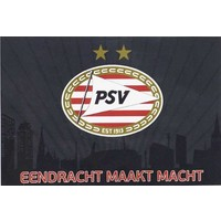 PSV Eindhoven Vlag psv groot 100x150 cm antraciet skyline