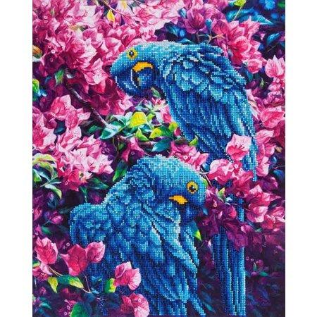 Diamond Dotz Blue Parrots Diamond Dotz: 52x42 cm
