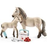 Schleich Rescue Set Horse Club Hannah Schleich 42430