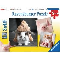 Puzzel grappige dierenportretten: 3x49 stukjes