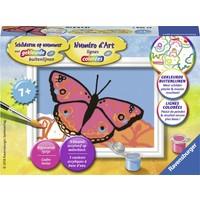 Vlinders Schilderen op nummer