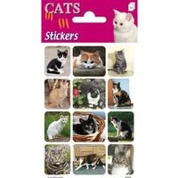 Stickervel: katten