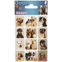 Stickervel: honden