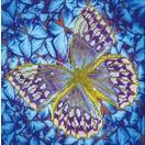 Diamond Dotz Flutterby Silver Diamond Dotz: 30x30 cm