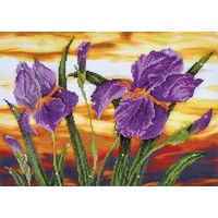 Iris Sunset Diamond Dotz: 52x37 cm