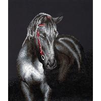 Midnight Stallion Diamond Dotz: 53x42 cm