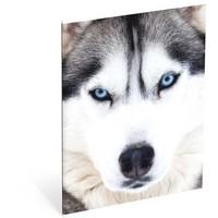Schrift Wood husky 3-pack A5 gelijnd