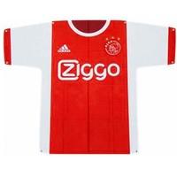 Vlag Ajax groot shirt