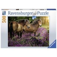 Puzzel pony`s tussen de hei: 500 stukjes