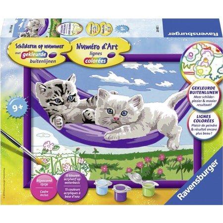 Ravensburger Kittens in de hangmat Schilderen op nummer