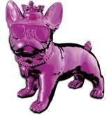 iDance Funky Bull iDance roze
