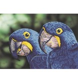 Diamond Dotz Blue Hyacinth Macaws Diamond Dotz 52x37 cm