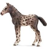 Schleich Schleich Knabstrupper veulen 13760 - Paard Speelfiguur - Horse Club - 3,5 x 9 x 8 cm