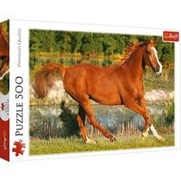 Puzzel Rennend Paard: 500 stukjes