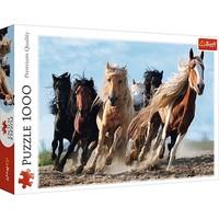 Puzzel Paarden in galop: 1000 stukjes
