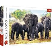 Puzzel Afrikaanse Olifanten: 1000 stukjes