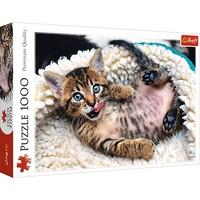 Puzzel Happy Kitten: 1000 stukjes