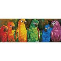 Rainbow Parrots Diamond Dotz: 77x30 cm