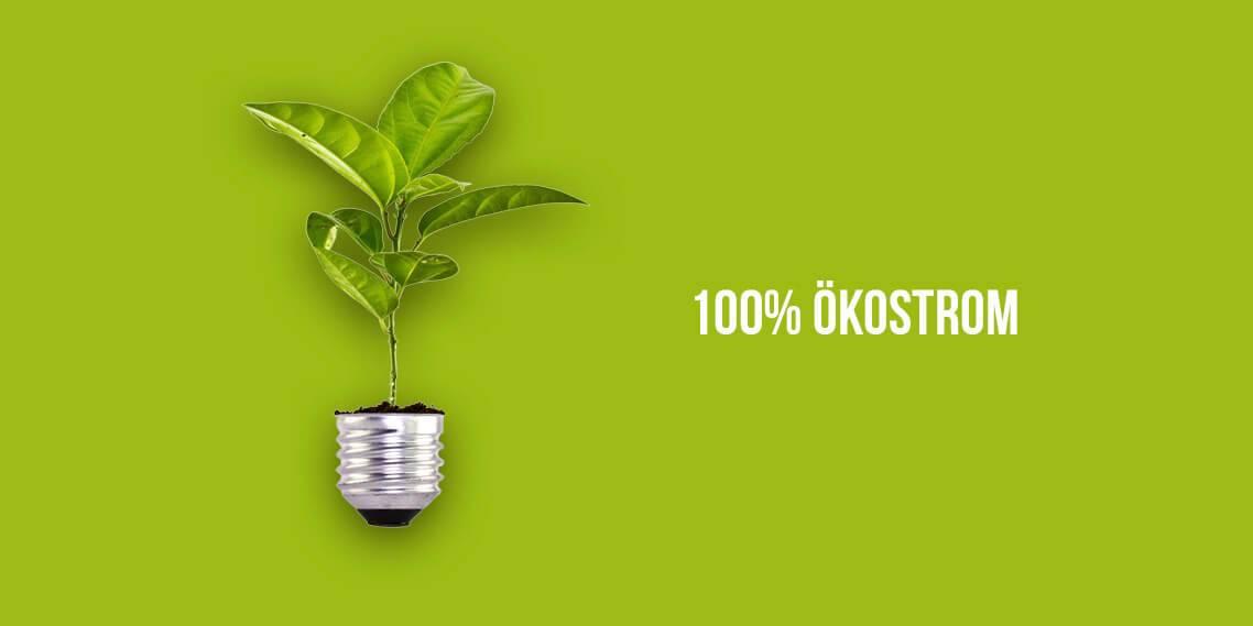 Wir produzieren mit 100% Ökostrom in Regensburg
