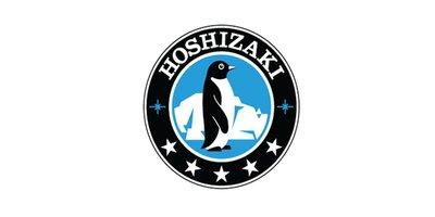 Hoshizaki ijsblokjesmachine