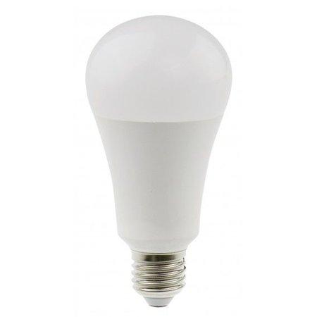 Daylight Daylight 15W Spaarlamp LED