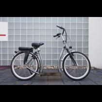 Ultimate - Elektrische Loopfiets Model 2020