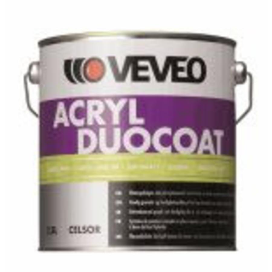 Celsor Acryl Duocoat Zijdeglans-1