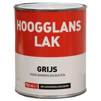 Hoogglans Lak - 750 ml Grijs