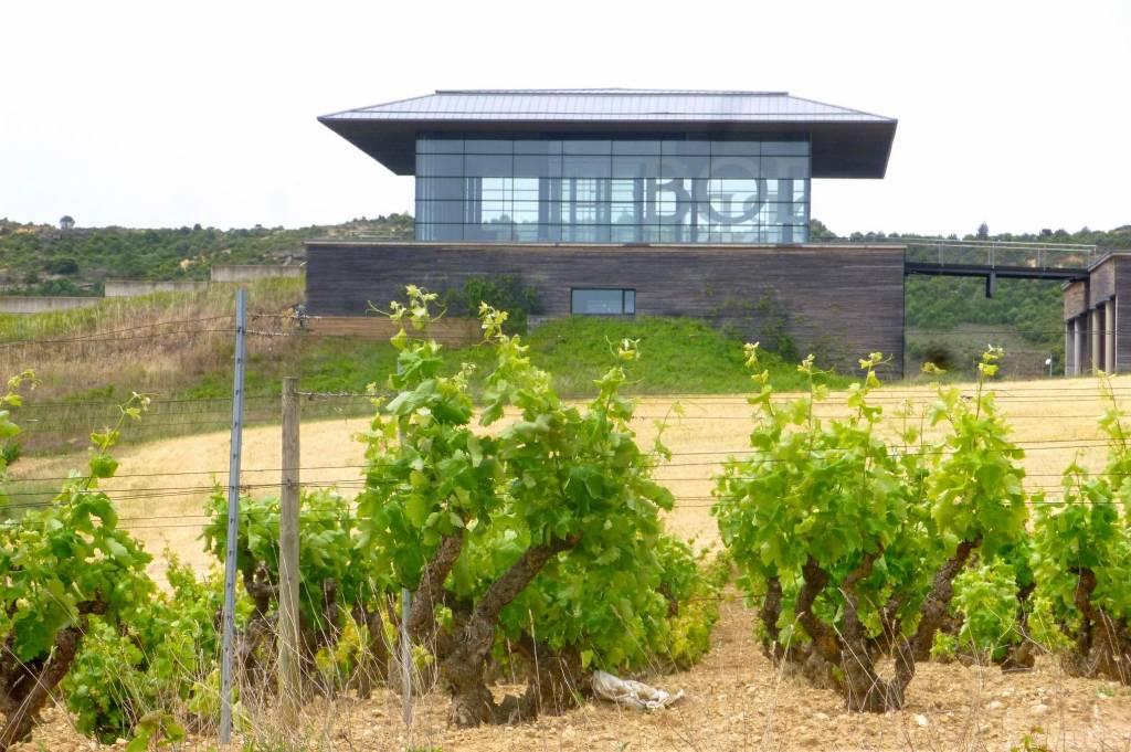 Wijndomein in de Kijker: Bodegas Baigorri