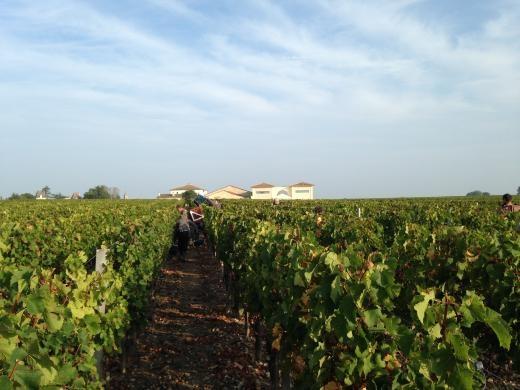 Bordeaux: een bloemlezing