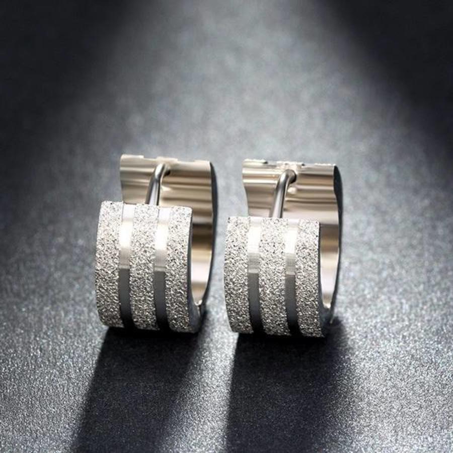 Zilverkleurige Oorbellen met Glittertje-3
