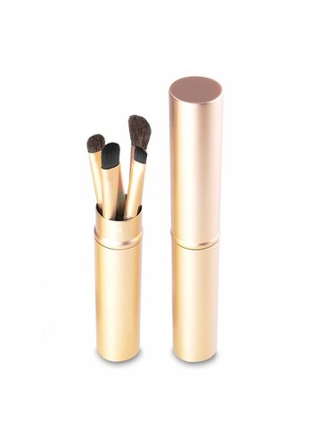 Make-up Brush Set Professional - 5 stuks -  Inclusief Kokertje