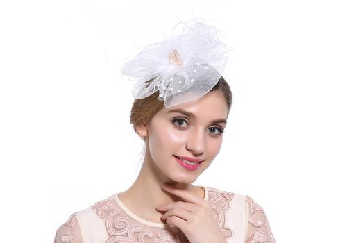 Chique  Fascinator / Birdcage Veil  - Wit