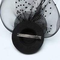 thumb-Prachtige Fascinator / Birdcage Veil  - Roze-3